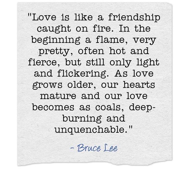 Love is like a friendship caught on fire. In the beginning a flame, very pretty, often hot and fierc